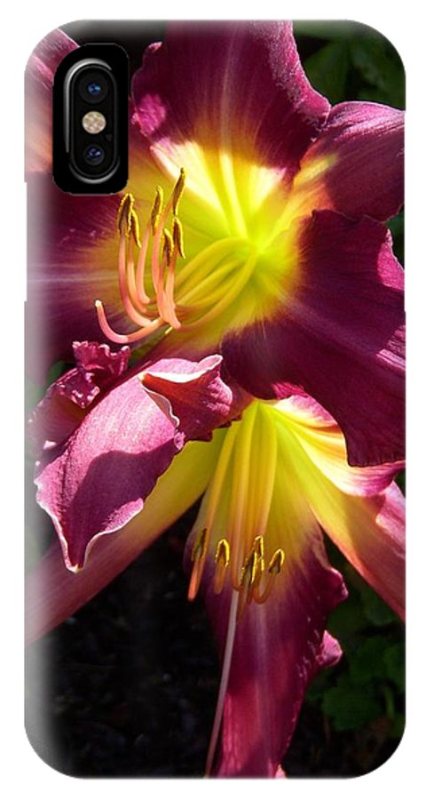 Day Lily IPhone X Case featuring the photograph You Light Up My Life by Terri Waselchuk