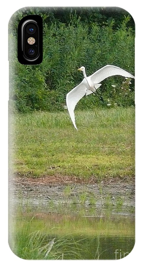 Heron IPhone X Case featuring the photograph Young Heron In Flight by Betsy Cotton