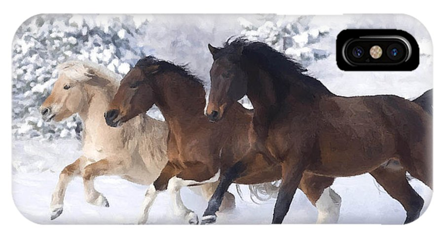Horses IPhone X Case featuring the painting Young Stallions by Dianne Meinke