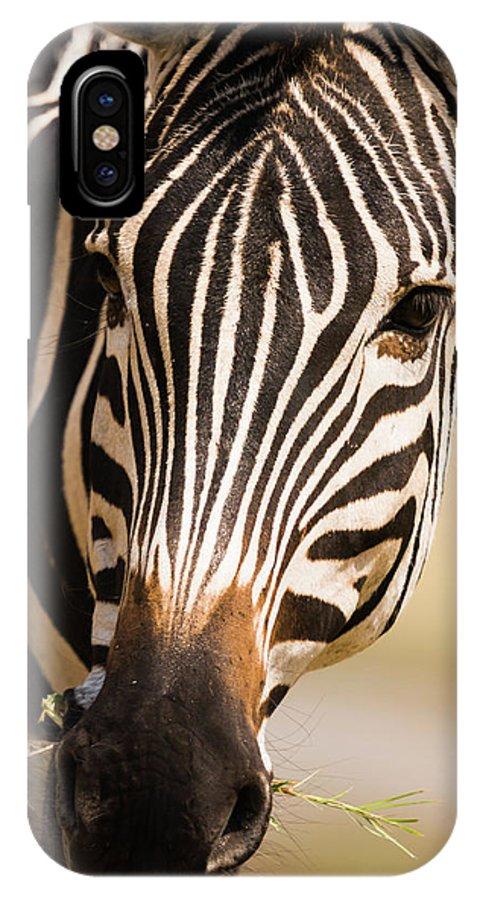 Burchell's Zebra IPhone X Case featuring the photograph Zebra by Cedric Favero - Vwpics