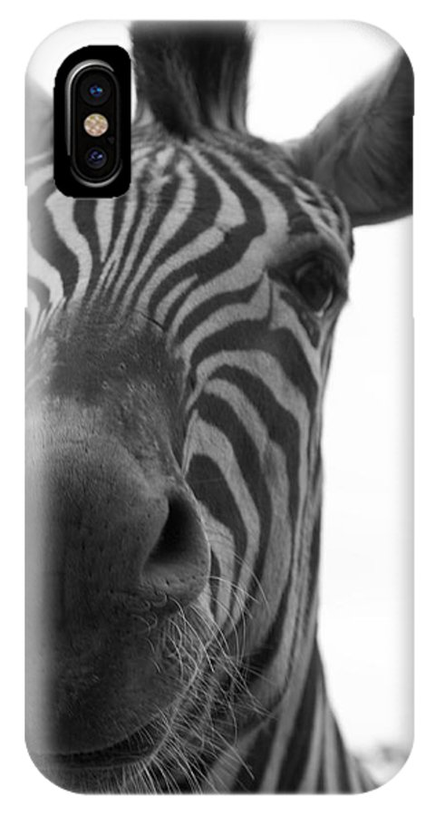 Zebra IPhone X Case featuring the photograph Zebra Close-up by Ashley Balkan