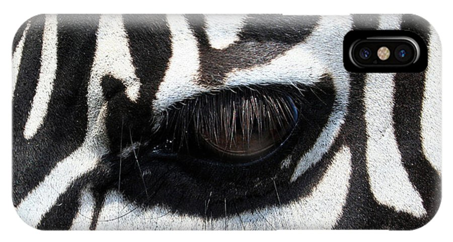 Zebra IPhone Case featuring the photograph Zebra Eye by Linda Sannuti