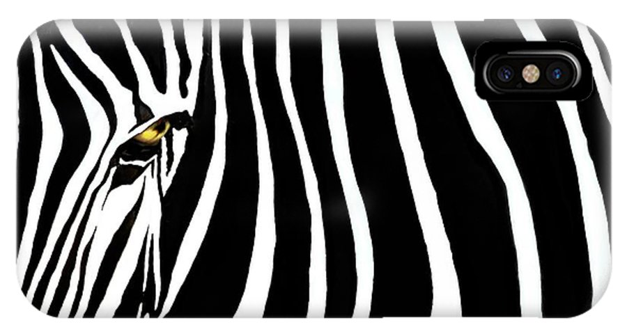 Zebra IPhone Case featuring the photograph Zebressence by Dan Holm