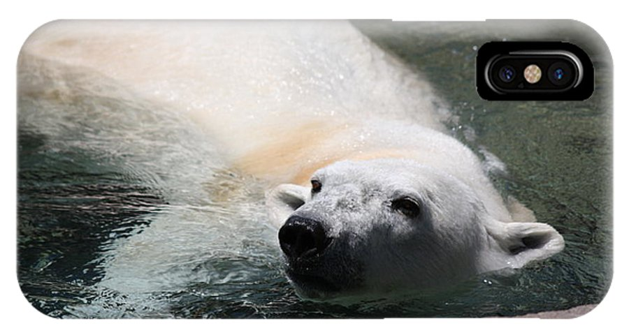 Polar Bear IPhone X Case featuring the photograph Zoo Life 2011.no.13 by RL Clough