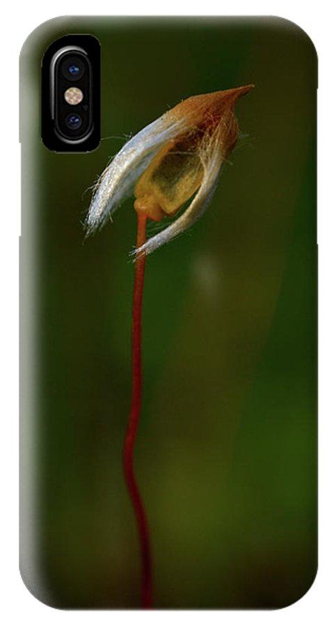 Jouko Lehto IPhone X Case featuring the photograph Alone by Jouko Lehto