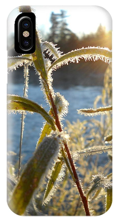 Close Up IPhone X / XS Case featuring the photograph Frost On Willow At Sunrise by Kent Lorentzen