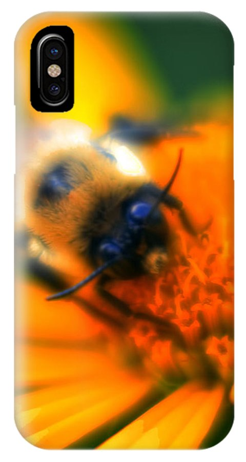 IPhone X Case featuring the photograph 007 Sleeping Bee Series Now Awake  Ovo by Michael Frank Jr