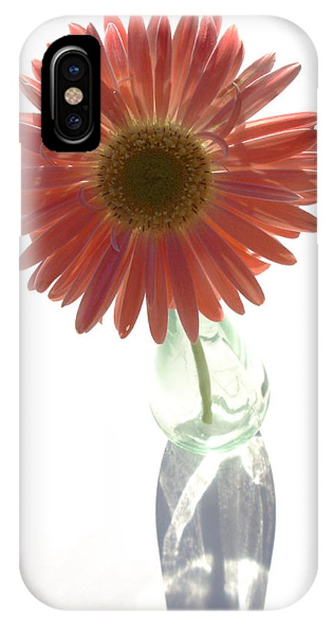 Gerbera Photographs IPhone X Case featuring the photograph 0645a2-1 by Kimberlie Gerner