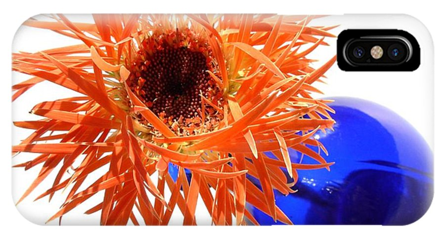 Gerbera Photographs IPhone X Case featuring the photograph 0700c1 by Kimberlie Gerner