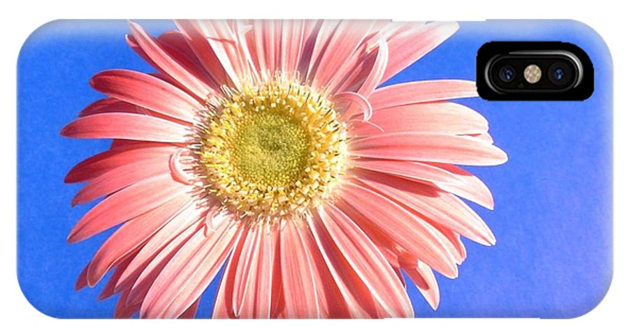 Gerbera Photographs IPhone X Case featuring the photograph 0711c2-001 by Kimberlie Gerner