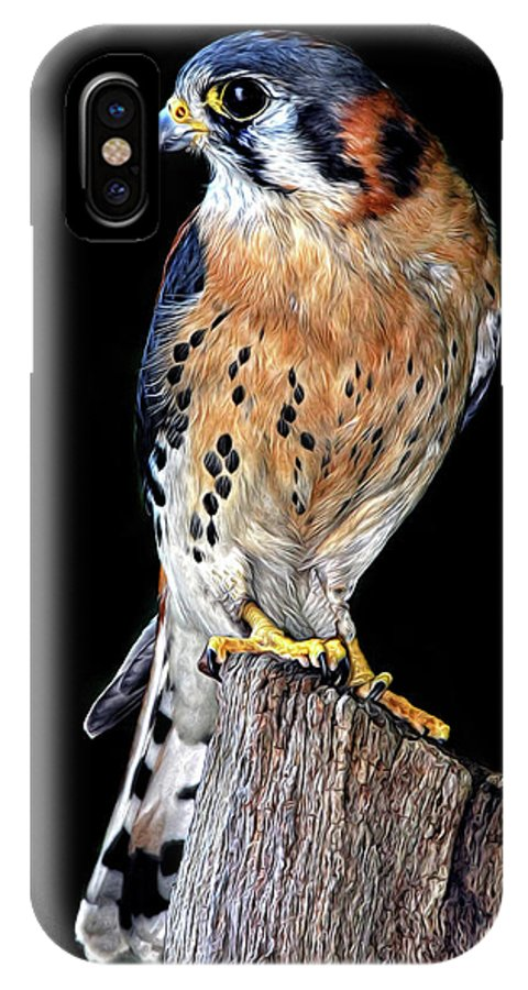 American Kestrel IPhone X Case featuring the photograph American Kestrel by Dave Mills