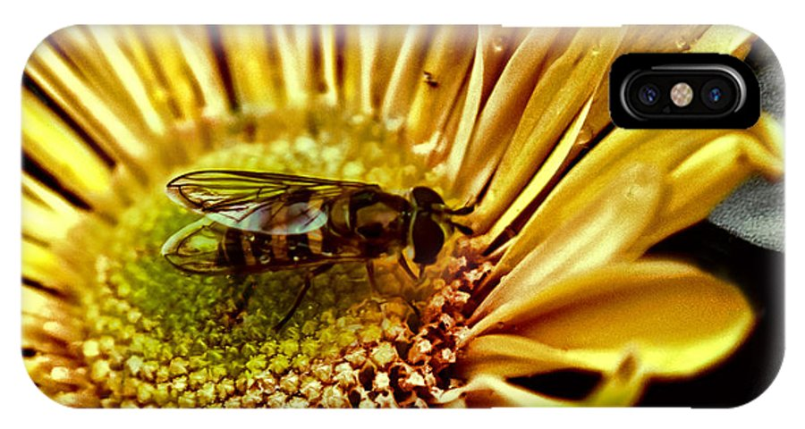 Animal IPhone X Case featuring the photograph Bee by Kelly Rader
