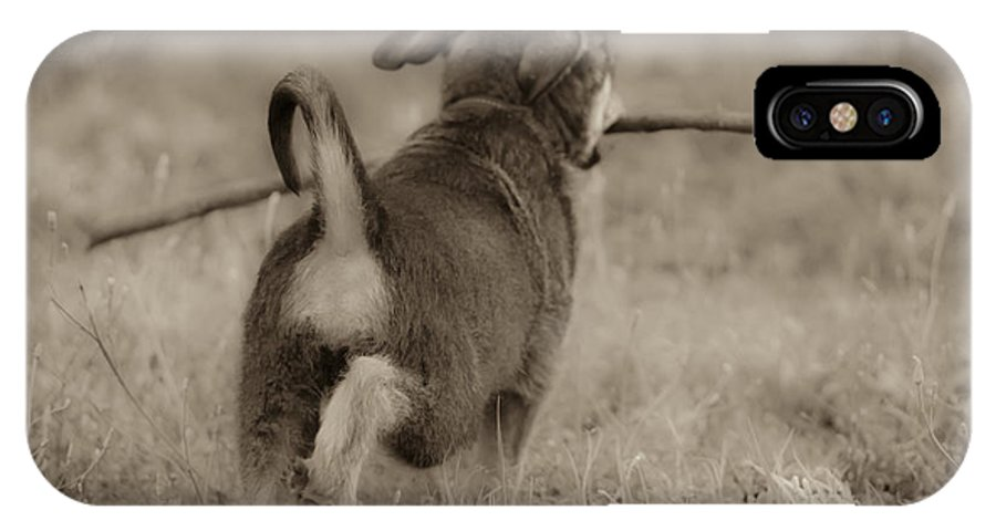 Fetch IPhone X Case featuring the photograph Classic by Kim Henderson