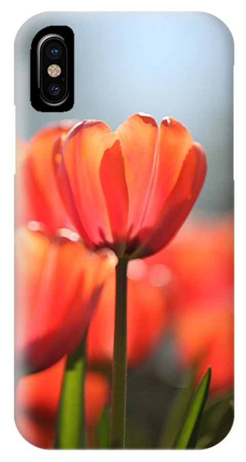 Flower IPhone X Case featuring the photograph Floral 34 by Carol Ann Thomas