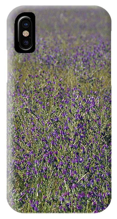 Jugiong IPhone X Case featuring the photograph Flower Known As Salvation Jane by Jason Edwards