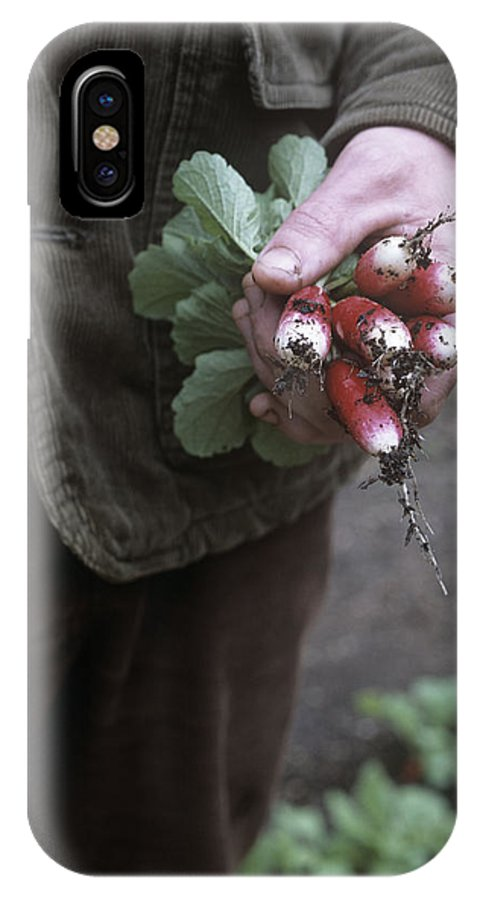 Raphanus Sativus IPhone X Case featuring the photograph Gardener Holding Freshly Picked Radishes by Maxine Adcock