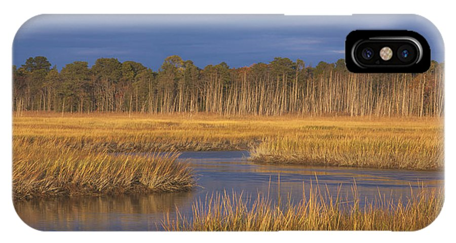 Cape May County New Jersey IPhone X Case featuring the photograph Golden Marsh by Tom Singleton