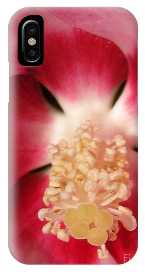 Hibiscus Moscheutos IPhone X Case featuring the photograph Hibiscus Moscheutos Named Luna Pink Swirl by J McCombie