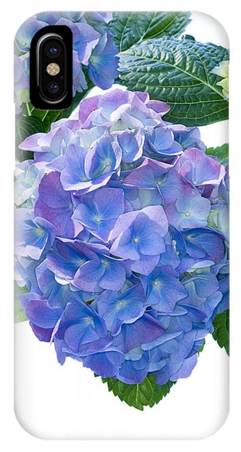 Hydrangea Macrophylla IPhone X / XS Case featuring the photograph Hydrangea (hydrangea Macrophylla) by Lawrence Lawry
