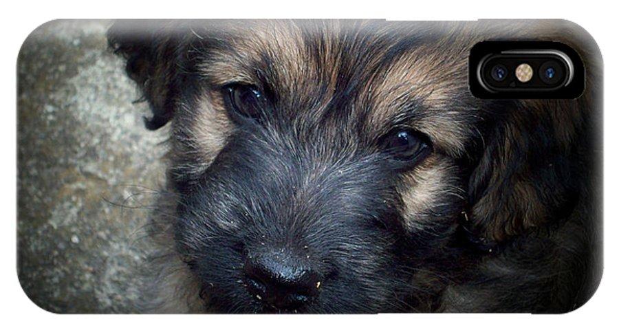 Puppy IPhone X Case featuring the digital art Iggy by Robert Orinski
