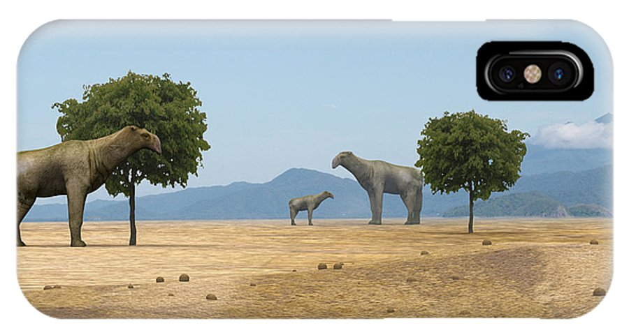 Baluchitherium IPhone X Case featuring the photograph Indricotherium by Christian Darkin