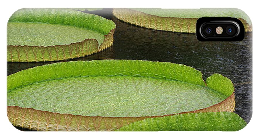 Flower IPhone X Case featuring the photograph Lily Pads by Paul Slebodnick