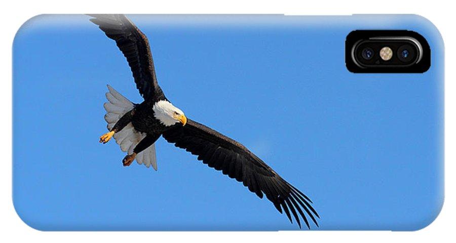 Doug Lloyd IPhone X Case featuring the photograph Locked On by Doug Lloyd