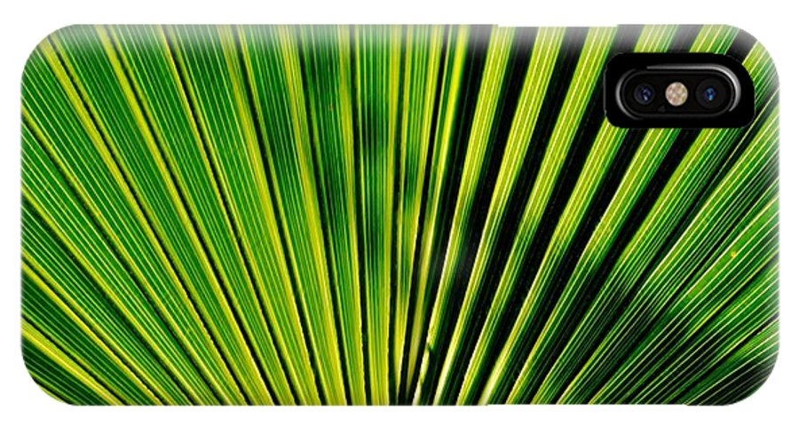Close Up; Palm; Leaf; Sunlight; Green; Background; Nature; Plant; Garden; Lines; Decorative; Texture; Shadows; Light; IPhone X / XS Case featuring the photograph Palm Leaf by Werner Lehmann