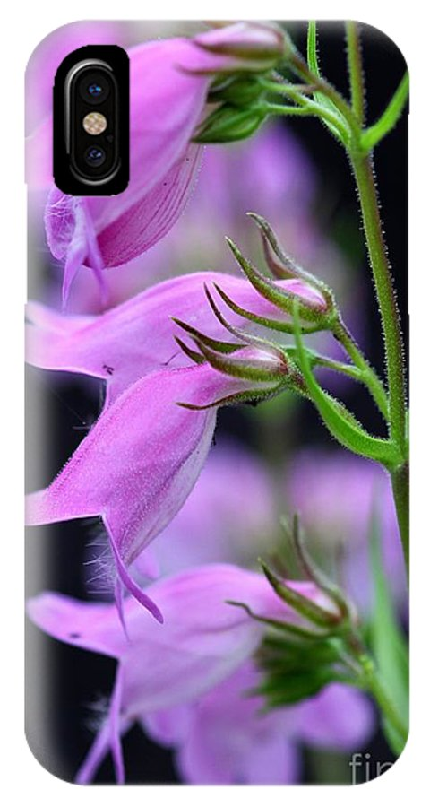 Flowers IPhone X / XS Case featuring the photograph Pretty Pink Penstemon by Debra Straub