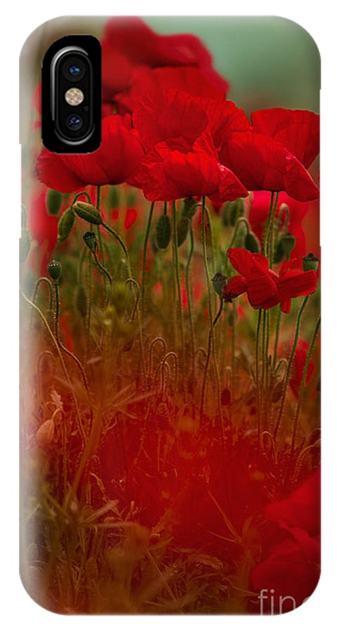 Poppy IPhone X Case featuring the photograph Poppy Flowers 06 by Nailia Schwarz