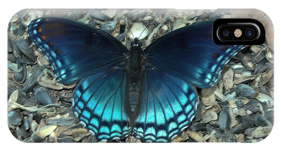 Insect IPhone X Case featuring the photograph Red Spotted Purple Swallowtail Butterfly by Donna Brown