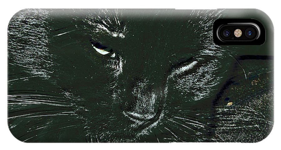 Animal IPhone X Case featuring the photograph Satin by Donna Brown