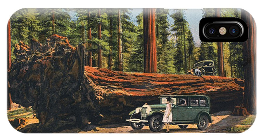 1930 IPhone X Case featuring the photograph Sequoia National Park by Granger