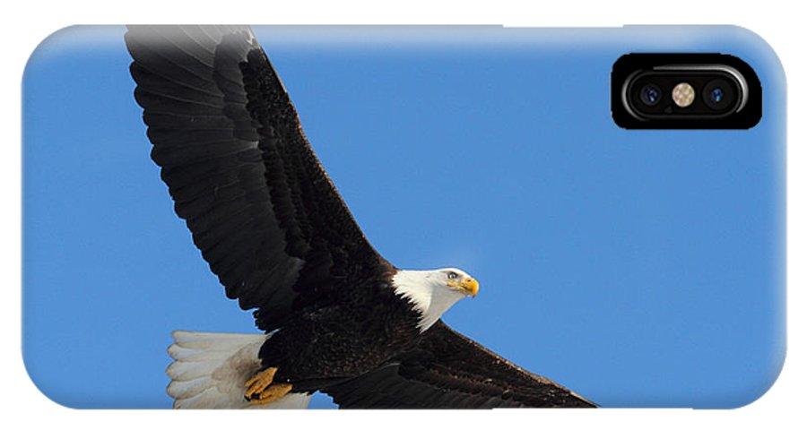 Doug Lloyd IPhone X Case featuring the photograph Soaring by Doug Lloyd