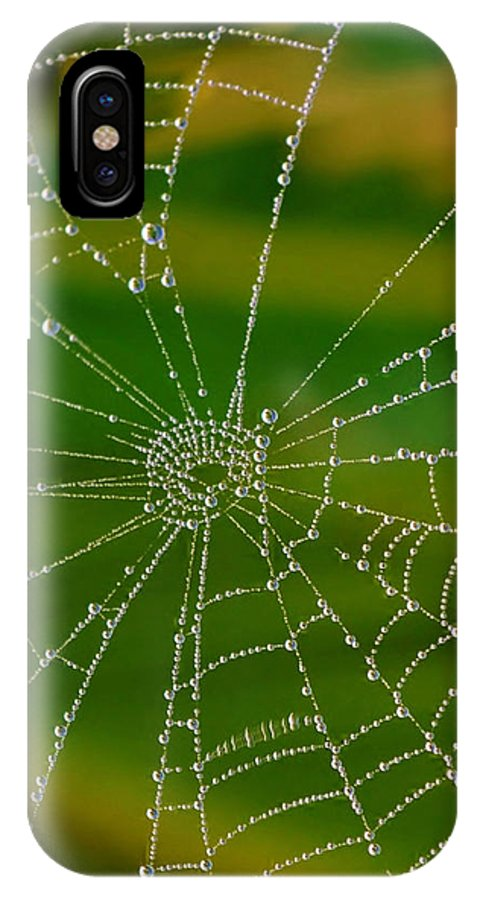 Close Up; Spiderweb; Dew; Drops; Plants; Garden; Morning; Early; Nature; Droplets; Reflection; Background; Autum; IPhone X Case featuring the photograph Spiderweb With Dew Drops by Werner Lehmann