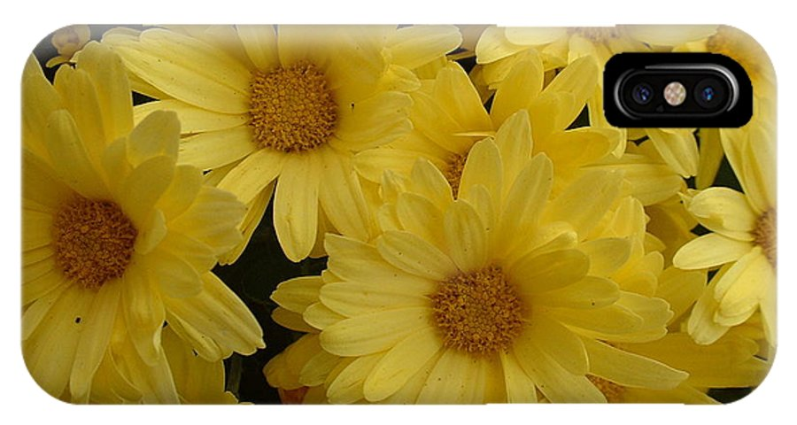 Flower IPhone X Case featuring the photograph Summer Fun by Paul Slebodnick