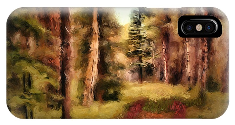 Forest IPhone X Case featuring the digital art The End Of The Road by Diane Dugas