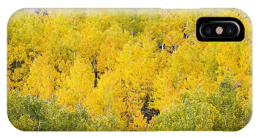 Aspen IPhone X Case featuring the photograph Vibrant Aspen Trees by MakenaStockMedia - Printscapes