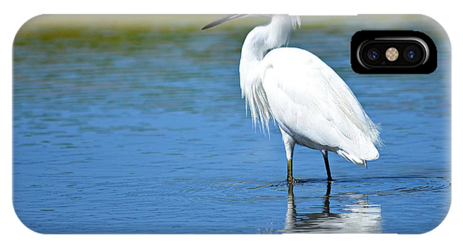Snowy White Egret IPhone X Case featuring the photograph Wading In Silence by Fraida Gutovich