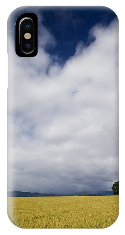 Farming IPhone X Case featuring the photograph Wheat Field And Storm by Karen Ulvestad