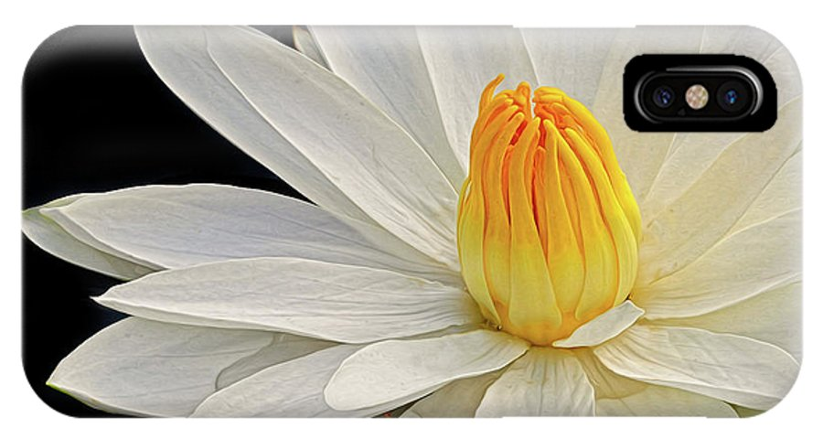 Waterlily IPhone X Case featuring the photograph White Waterlily by Dave Mills