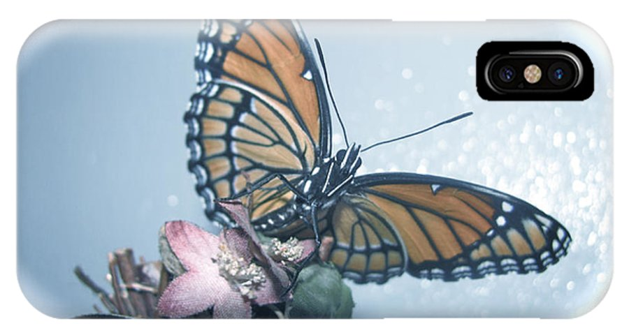 Butterfly Collection Design IPhone X Case featuring the photograph Butterfly Collection Design by Debra   Vatalaro