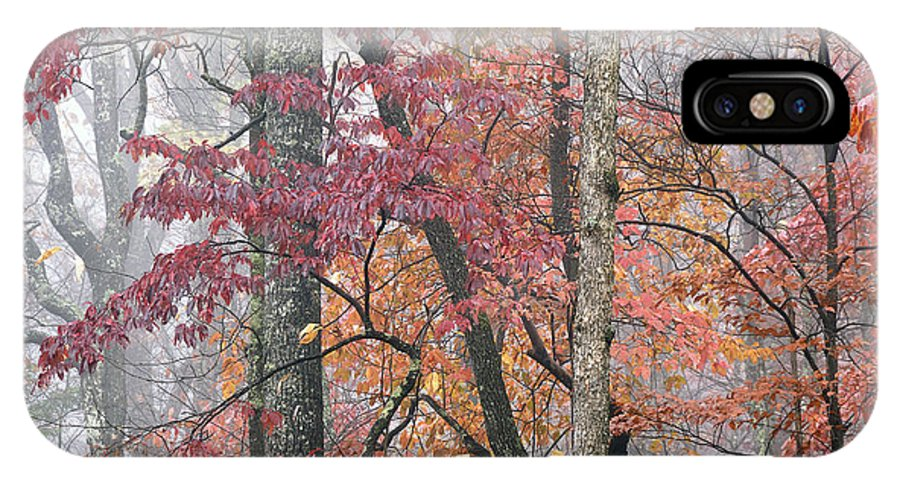 Autumn IPhone X Case featuring the photograph Autumn Monongahela National Forest by Thomas R Fletcher