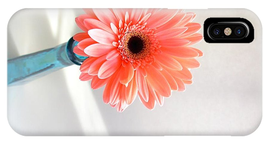 Gerbera Photographs IPhone X Case featuring the photograph 1636c by Kimberlie Gerner