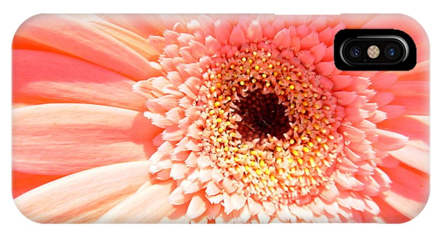 Gerbera Photographs IPhone X Case featuring the photograph 1673-001 by Kimberlie Gerner