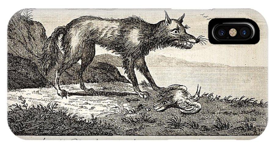 America IPhone X / XS Case featuring the photograph 1778 Falkland Islands Wolf Fox Extinct by Paul D Stewart