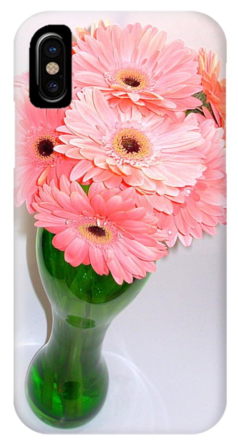 Gerbera Photographs IPhone X Case featuring the photograph 1862-001 by Kimberlie Gerner