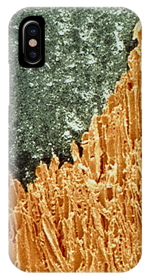 Pencil IPhone X / XS Case featuring the photograph Coloured Sem Of A Sharpened Pencil by Power And Syred