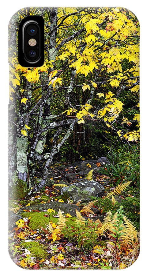 Autumn IPhone X Case featuring the photograph Fall Color Highland Scenic Highway by Thomas R Fletcher