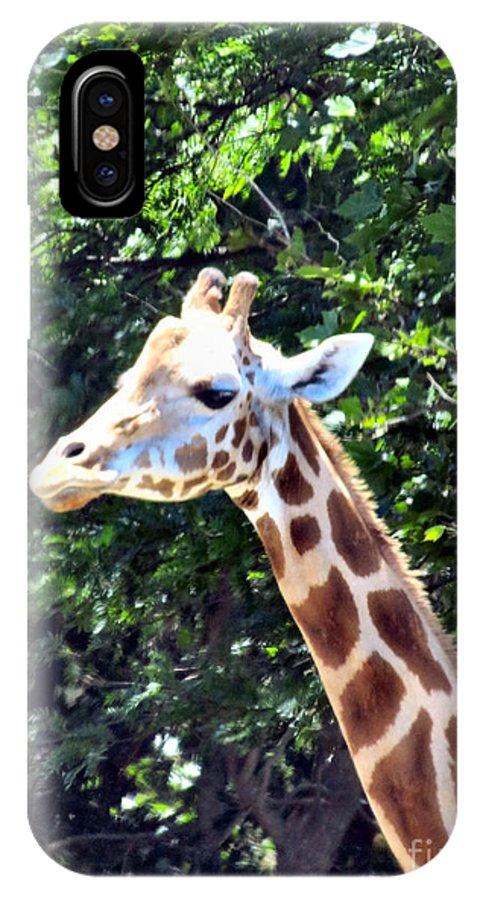 Giraffe IPhone X Case featuring the photograph Long Neck by Art Dingo